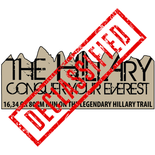 The Hillary Logo2