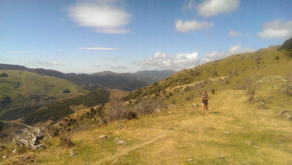 Haurangi Ridge